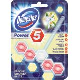 Domestos Power 5 WC-Stein frische Orangenblüte
