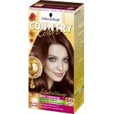 Schwarzkopf Country Colors Intensivt�nung 66 peru nougat braun