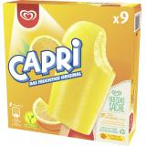 Capri Familienpackung Langnese Eis