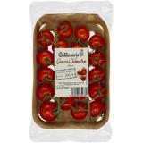 Genuss-Tomaten