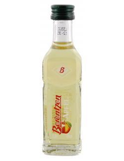 Berentzen Apfel 1,98 EUR/100 ml 639743