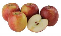 Apfel Braeburn  - 2011640188490