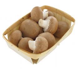 NaturWert Bio Creme Champignons  (250 g) - 4049656119502