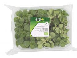 NaturWert Bio-Feldsalat  (125 g) - 4011424110196