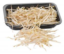 Sojasprossen  (250 g) - 4000784100008