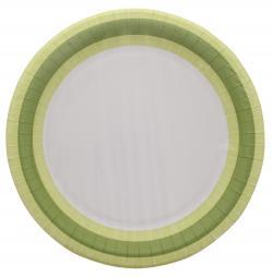 Duni Pappteller 22cm green line  (1 St.) - 7321011679591