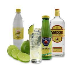 Set: Longdrink Gordon's® Gin Tonic  - 2145300005448