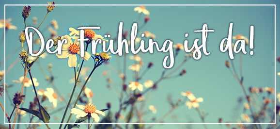 Bünting Blütentee