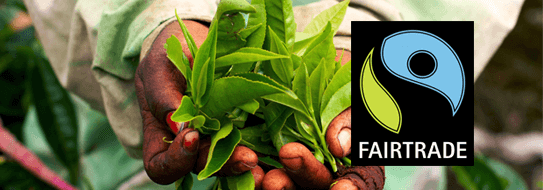 Tipps und Rezepte mit Fairtrade Produkten - zur Ansicht hier klicken