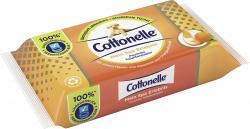 Cottonelle Feuchtes Toilettenpapier Mein Spa Erlebnis Kaschmir und Orangenöl-Duft