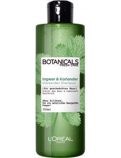 L'Oréal Fresh Care Botanicals Ingwer & Koriander Stärkendes Shampoo