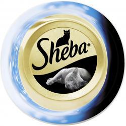 Sheba mit Thunfischfilets