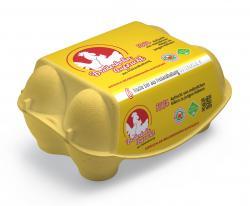 Eifrisch Sandy Bruderhahn Eier Klasse L/M aus Freilandhaltung