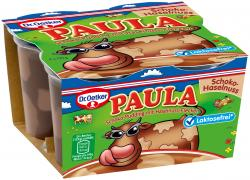 Dr. Oetker Paula Schoko-Pudding mit Haselnuss-Flecken