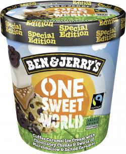 Ben & Jerry's One Sweet World (500 ml) - 8714100279267