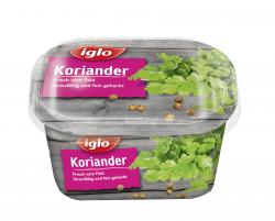 Iglo Koriander