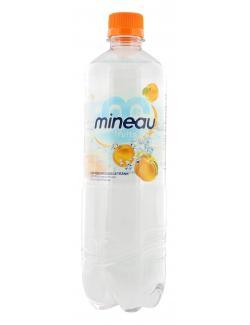 Mineau Fruits Erfrischungsgetränk Pfirsich (750 ml) - 4010491005824