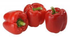 Paprika Mix rot - 3 Stück