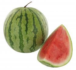 Wassermelonen Mini
