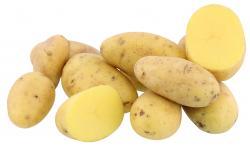 Kartoffeln Marabell vorwiegend festkochend