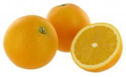Bio Orangen für Saftpresse