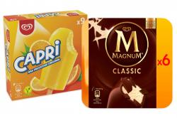 Set: Große Eisbox mit Capri 45 Stk. und Magnum Classic 48 Stk.