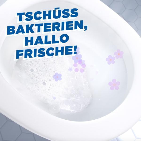 WC Ente Frische-Siegel Marine