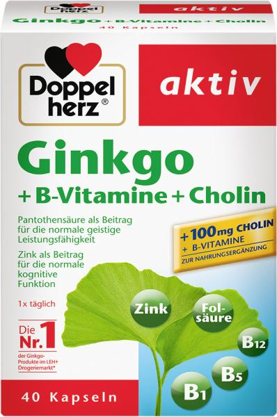 Doppelherz aktiv Gingko + B-Vitamine + Cholin Kapseln