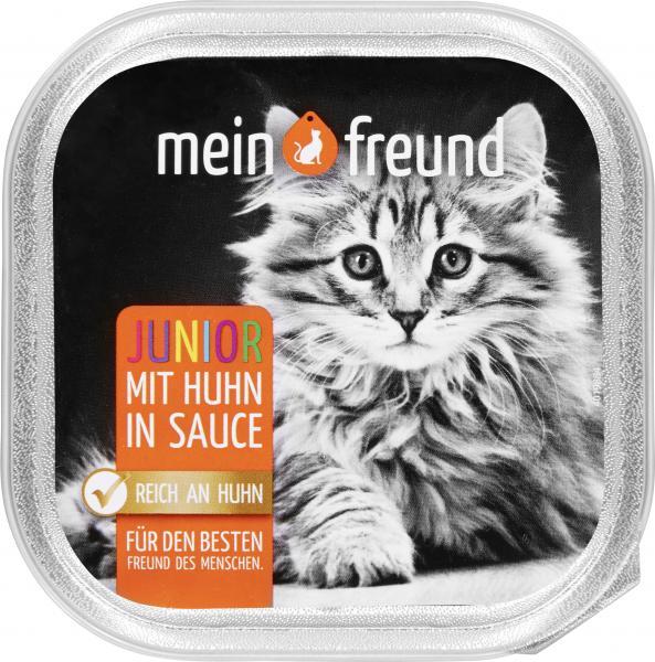 Mein Freund Katze Junior mit Huhn in Sauce