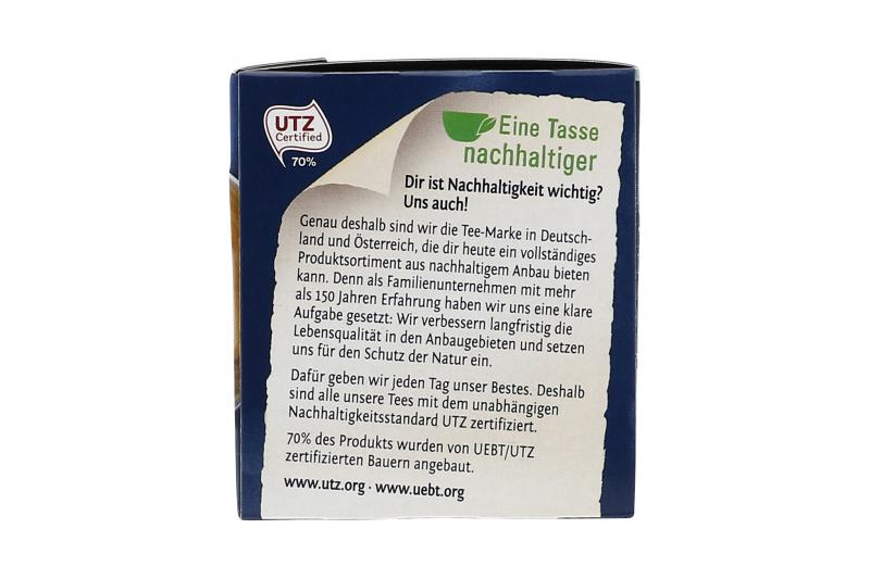 Meßmer Grüner Tee Detox Brennessel
