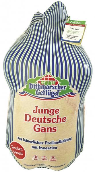Dithmarscher Geflügel Junge deutsche Gans