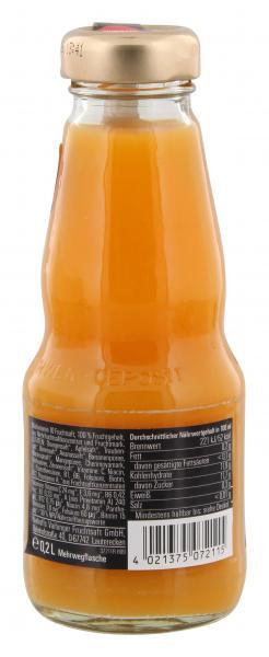 Vaihinger Multivitamin 10 Fruchtsaft (Mehrweg)