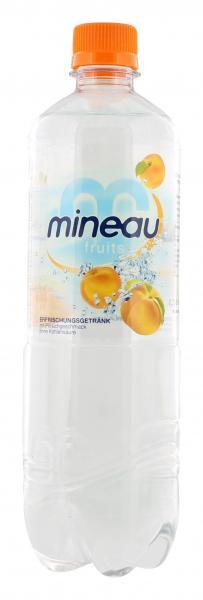 Mineau Fruits Erfrischungsgetränk Pfirsich (Einweg)