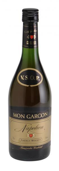 Napoleon Mon Garcon