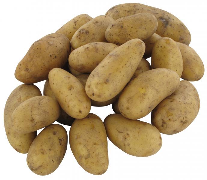 Bio Speisefrühkartoffeln Inova festkochend