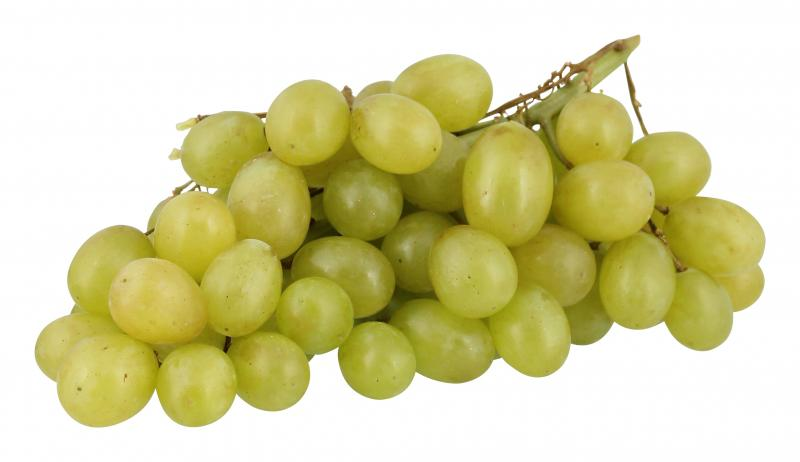 Trauben Hell Kernlos Thompson Seedless