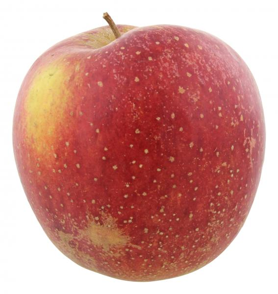 Apfel Wellant