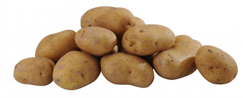 Kartoffeln Gala vorwiegend festkochend